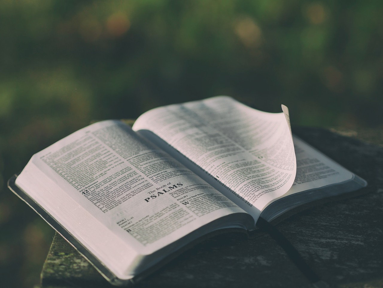 Can You Really Trust The Bible? | 20/10/19